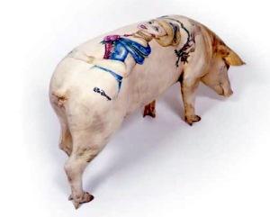tatuaje-cerdos-26